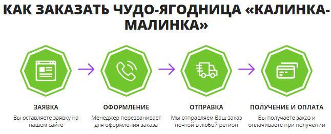 калинки малинки новосибирск база отдыха цены