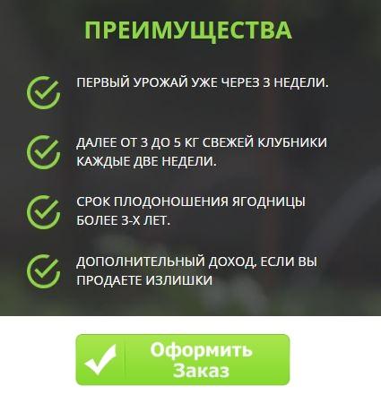 Как заказать ягоды калинка малинка в Кемерово