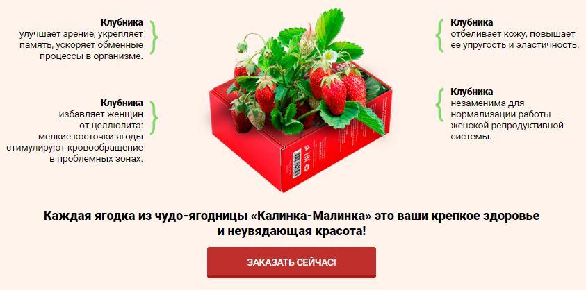 ягоды калинка малинка в Кемерово