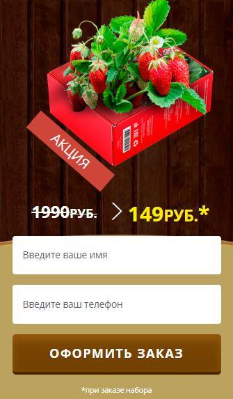 Как заказать Чудо ягодница клубники в Волжском